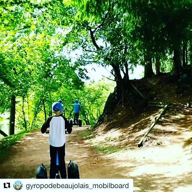 Today's glide through the wools somewhere in beautiful Beaujolais region of France  Segway tour destination of the day . . @gyropodebeaujolais_mobilboard ・・・ 🌲🌲 Un site à découvrir en Parcours facile et accessible à tous.