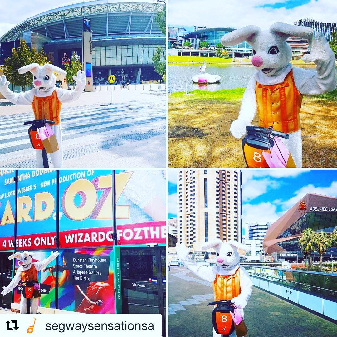 """Happy Easter  from Segway Sensations in Adelaide . . @segwaysensationsa ・・・ *** EASY EASTER GIVEAWAY*** . WIN A FREE SEGWAY TOUR AND CHOOSE YOUR LOCATION - THE BAROSSA VALLEY OR THE ADELAIDE RIVERBANK . The Easter Bunny loved his @SegwaySensationSA tour so much that he's spreading the love! . To enter, do these 3 easy things:  1. """"Like"""" this post 2. """"Follow"""" our page  3. """"Tag"""" someone you want to Segway with🤗 . For a Bonus Entry: . """"Share"""" this post to your account and tell us why you love Adelaide! (Don't forget to Tag @segwaysensationsa) . Contest ends on Easter Monday and the winner will be declared next week  . Happy Easter Everyone! Hope it's a """"Wheelie"""" Great Long Weekend! 🏼"""