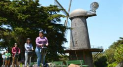 golden-gate-park-segway-tour-to-ocean-beach-windmills-and-bison-800-335.jpg